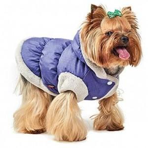 """Жилет для собак """"Бонжур"""" Pet Fashion"""