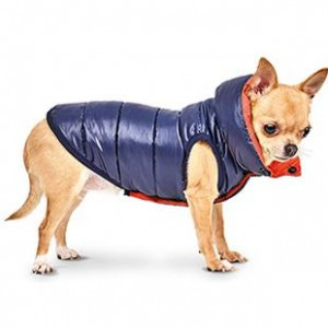 """Жилет для собак """"Маркиз"""" Pet Fashion"""