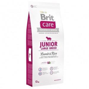 Brit Care Junior Large Breed Lamb & Rice 3кг