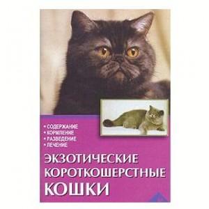 Экзотические короткошерстные кошки 80стр