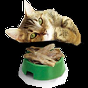 Вкусные палочки для кошек